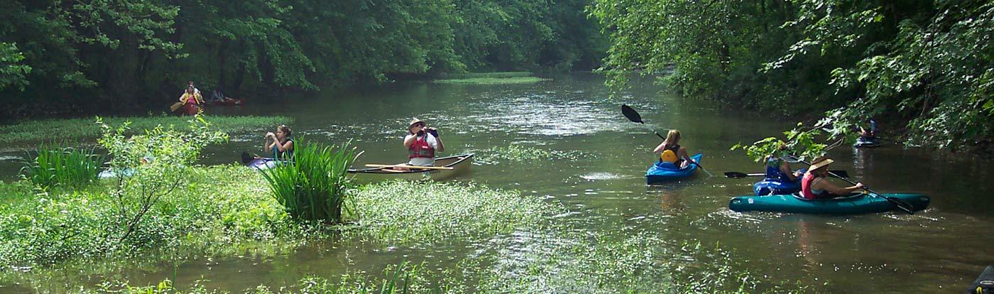banner-environmental-stewardship